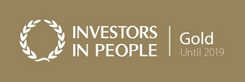 Mploy achieves Investors in People Gold Accreditation